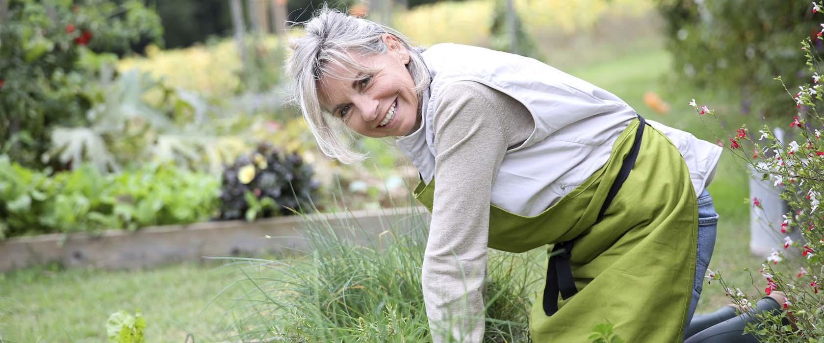 hagearbeid og ryggsmerter