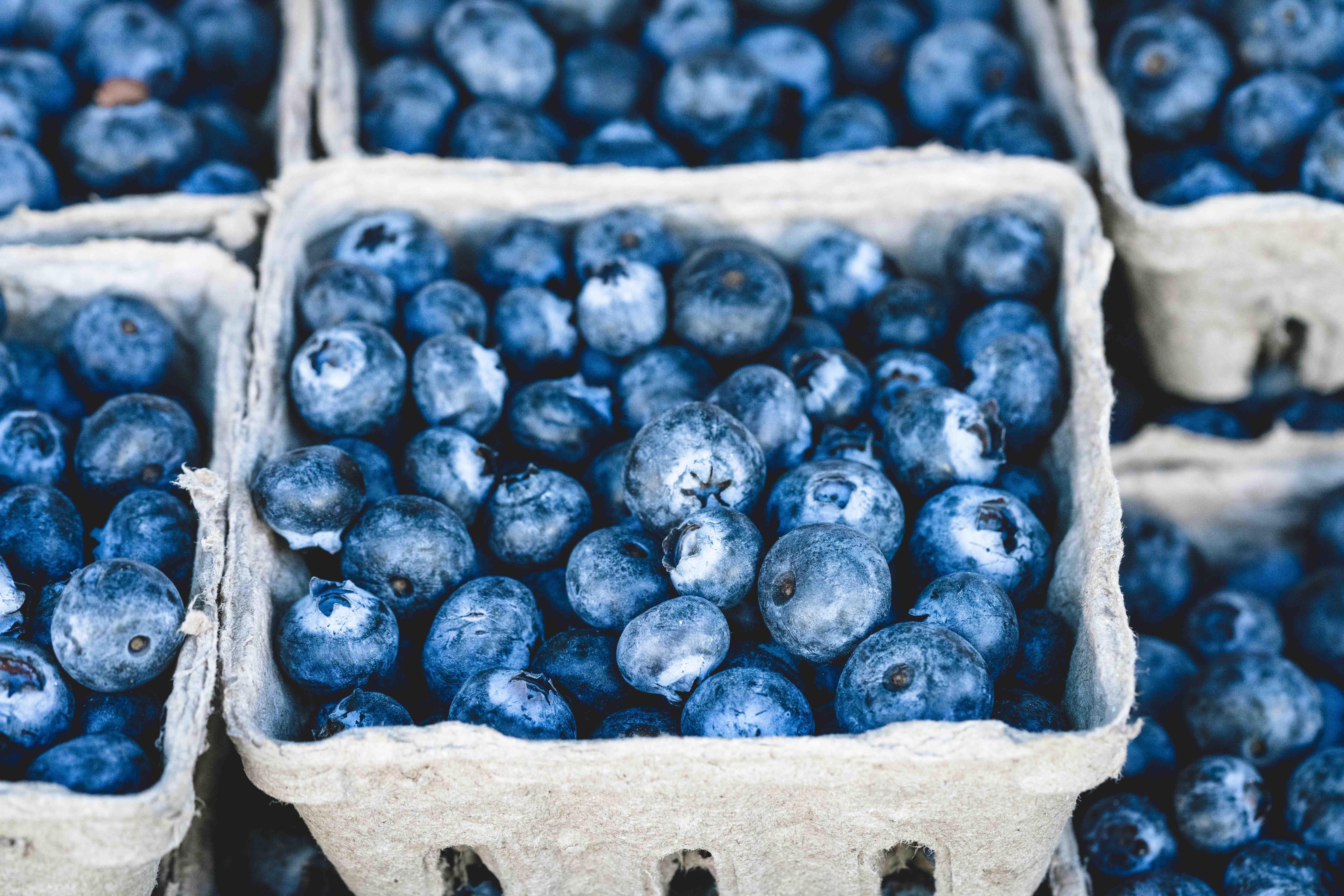 Sunn blåbærpai